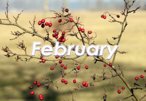 February at The Fulcrum Group