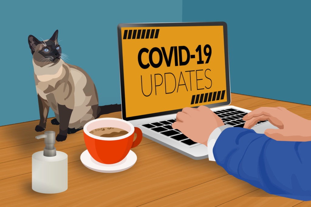 Working from home During the Covid 19 Peak