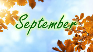 September at The Fulcrum Group